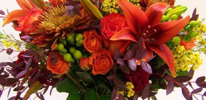 gifts, flowers, naturita